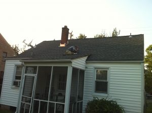 pewter gray shingle roof