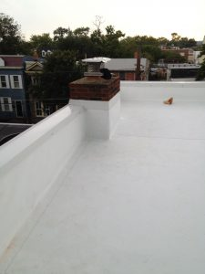 TPO roof with new flashings and coping