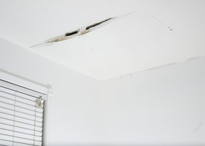 Signs Your Roof is Leaking - Make a Plan for Repairs Today! | Roofer in Francovia, VA | Lyons Roofing