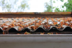 Don't Let Leaves Cause Roof Damage This Fall | Roofer in Annadale, VA | Lyons Contracting