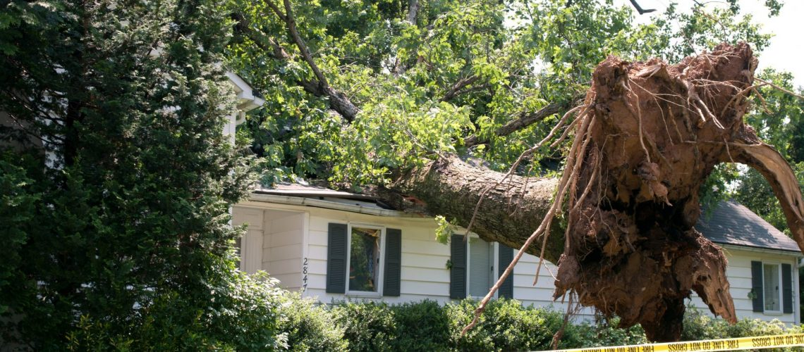 What to Do About Summer Storm Damage to Your Roof | Roofer in Mclean, VA